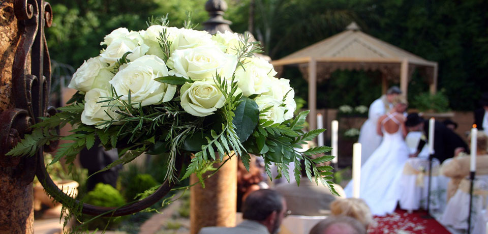 Ontario Wedding Officiants Kettle Creek Weddings